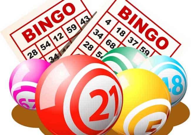 bingos apostas legalização